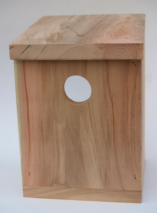 Build A Window Bird House