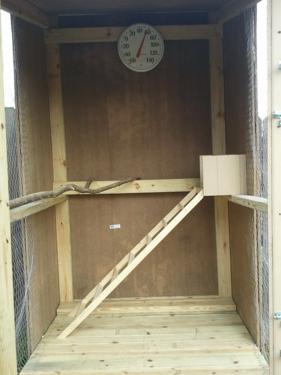 How To Build A Backyard Chicken Coop For Under 250
