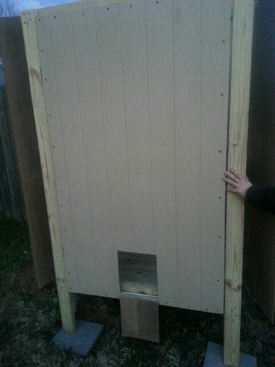 diy backyard chicken coop_10