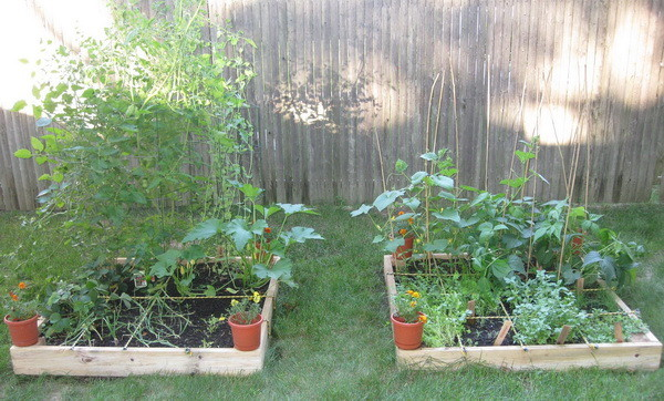 diy cheap small raised garden planter