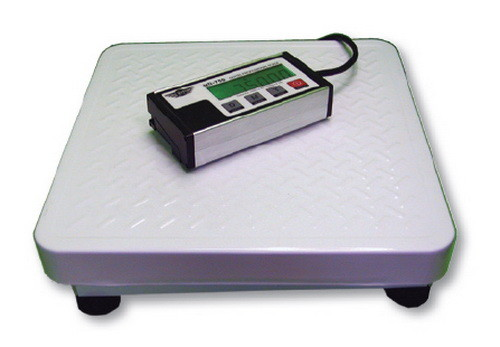 Large high capacity scales for xl people