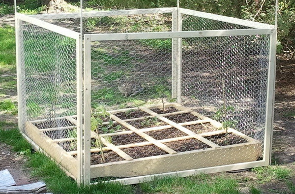 square foot gardening raised planter with fence