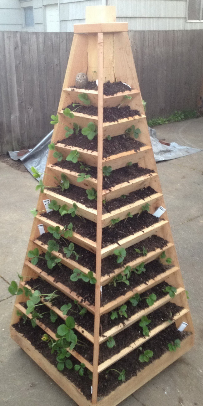 How to build a vertical garden pyramid tower for your next for Macetero vertical pallet