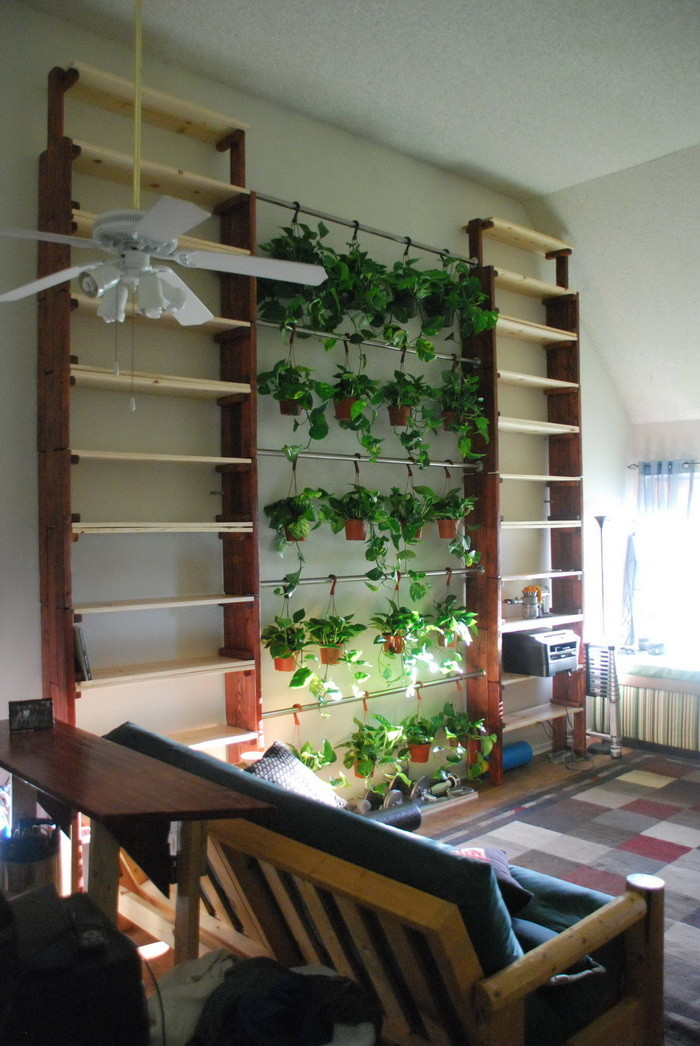 Vaulted Ceiling Bookshelf