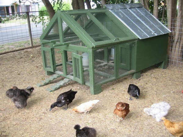chicken coop house_08