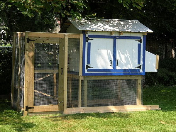 Chicken coop ideas designs and layouts for your backyard for Plans for a chicken coop for 12 chickens