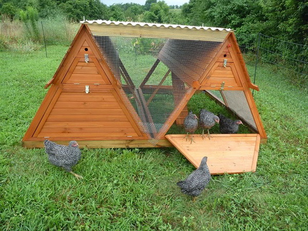 chicken coop house_13
