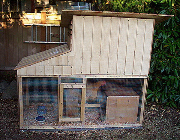 chicken coop house_37