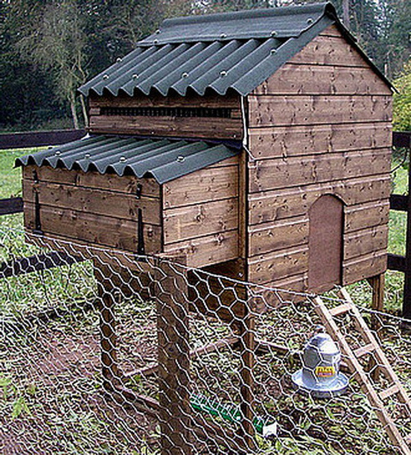 chicken coop house_40