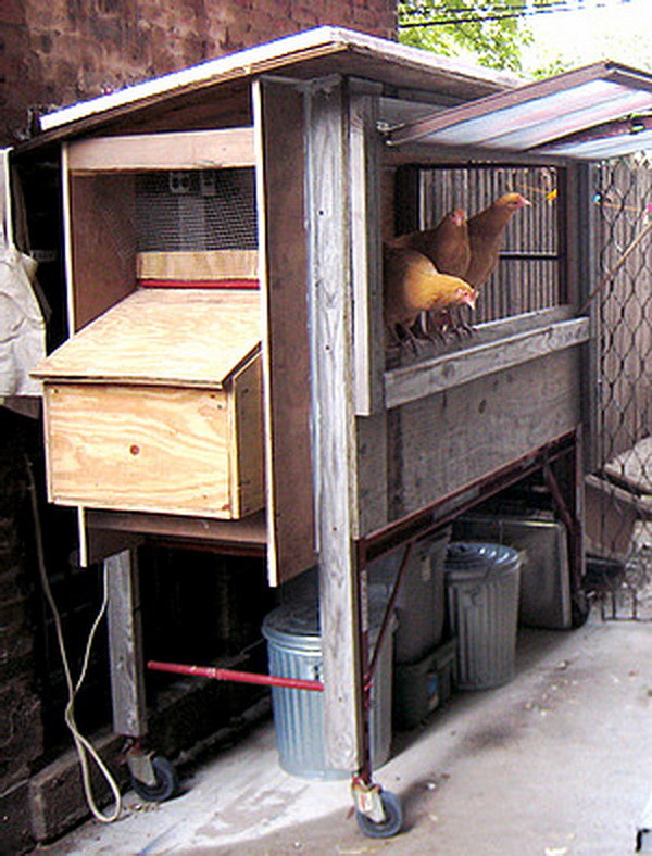 chicken coop house_41