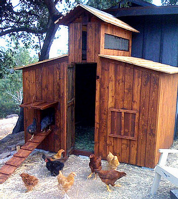 Cute Backyard Chicken Coops : Chicken Coop Ideas  Designs And Layouts For Your Backyard Chickens