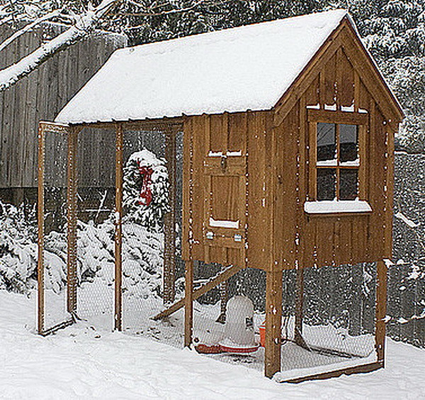 chicken coop house_44