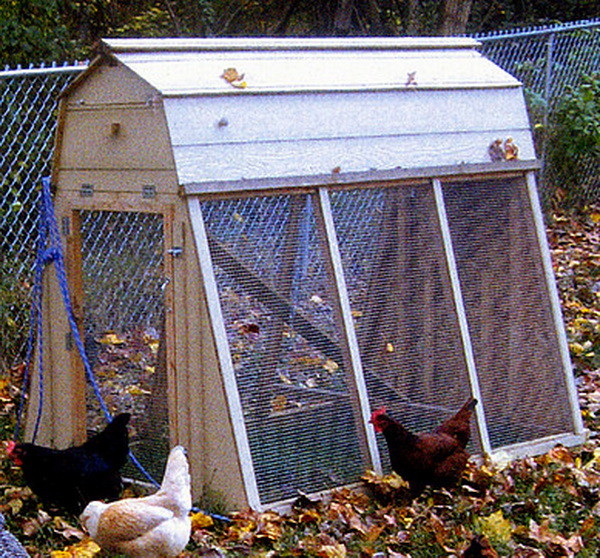 chicken coop house_53