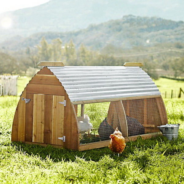 chicken coop house_63