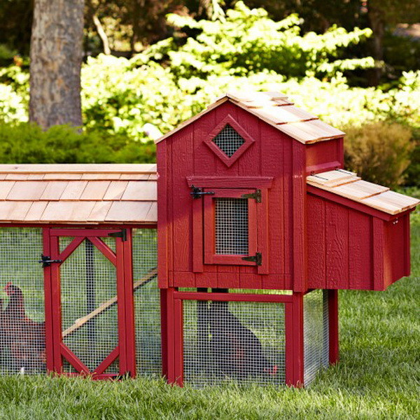 chicken coop house_66