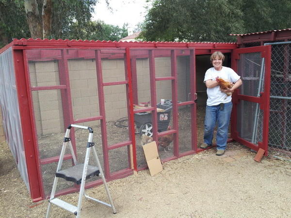 chicken coop house_68