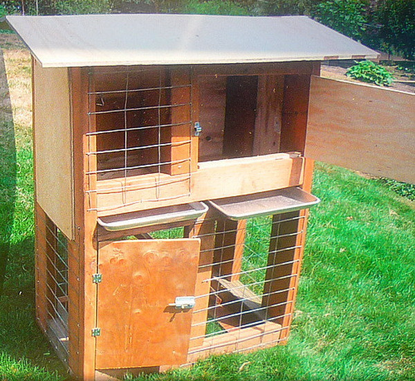 chicken coop house_69