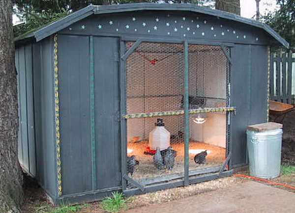 chicken coop house_71