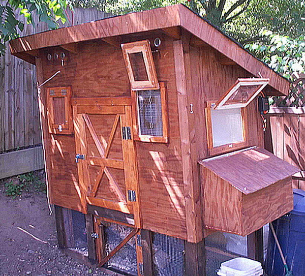 chicken coop house_75