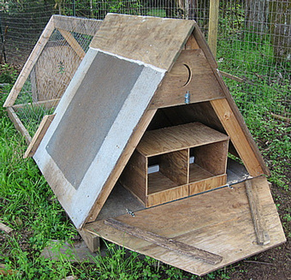 chicken coop house_80