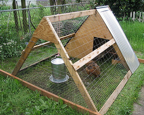 chicken coop house_82