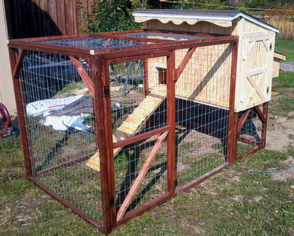 chicken coop house_89