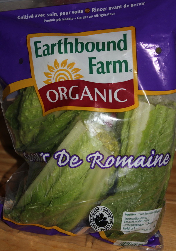 how to grow romaine lettuce from a stump_1