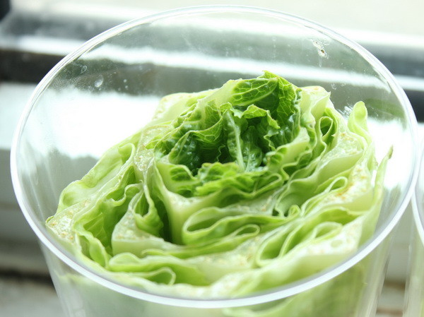 how to grow romaine lettuce from a stump_3