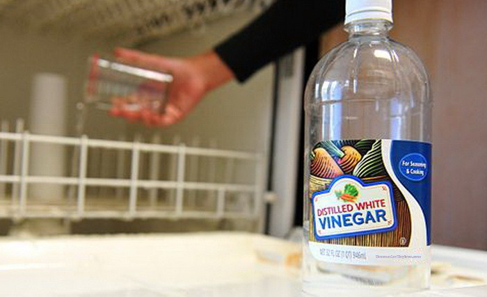 Use Vinegar In Dishwasher To Clean And Sanitize