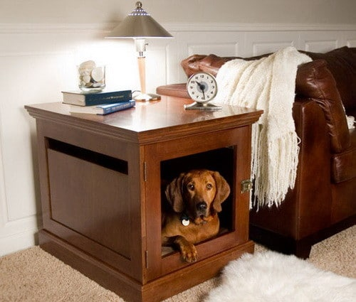 Creative Dog House Design Ideas