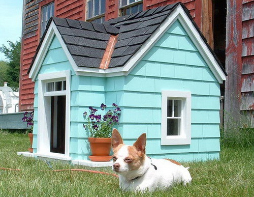 Creative Dog House Design Ideas_14