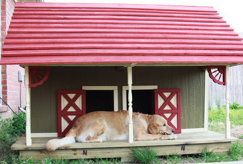 Creative Dog House Design Ideas_22