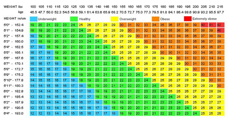 bmi index chart 2013