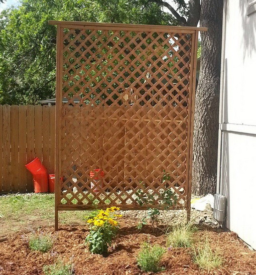 How to get added privacy in your backyard by building a trellis - Backyard trellis designs photos ...