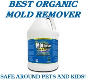 organic mold and mildew remover. Black Bedroom Furniture Sets. Home Design Ideas