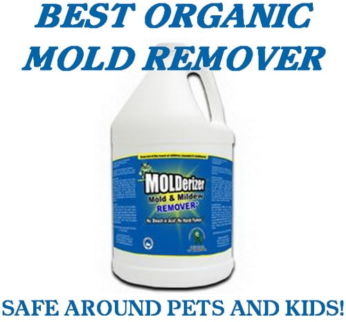 Organic Mold and Mildew Remover