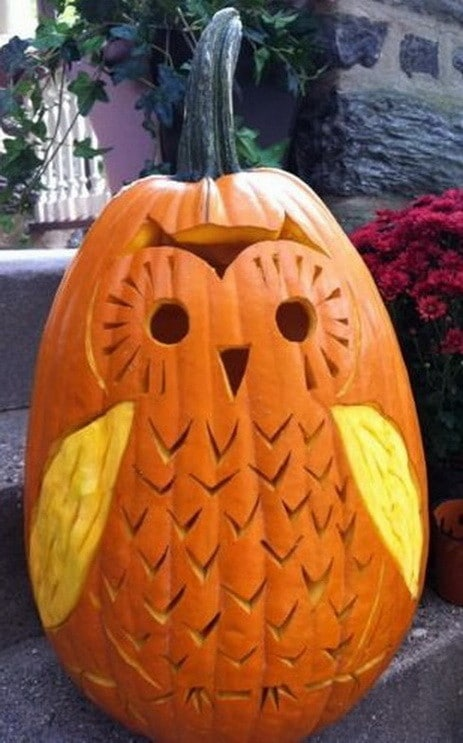 38 halloween pumpkin carving ideas how to carve for Different pumpkin designs