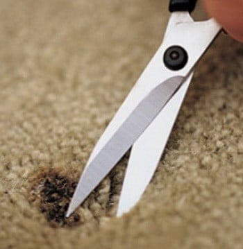 fix-carpet-burn-scissors