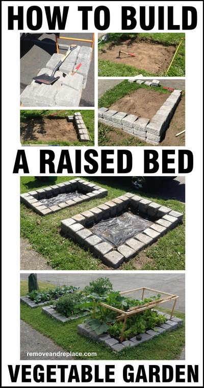 raised bed vegetable garden DIY