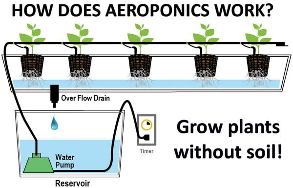 how does aeroponics work