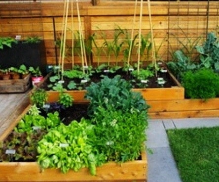 55 great garden layout ideas backyard gardens for Great garden ideas