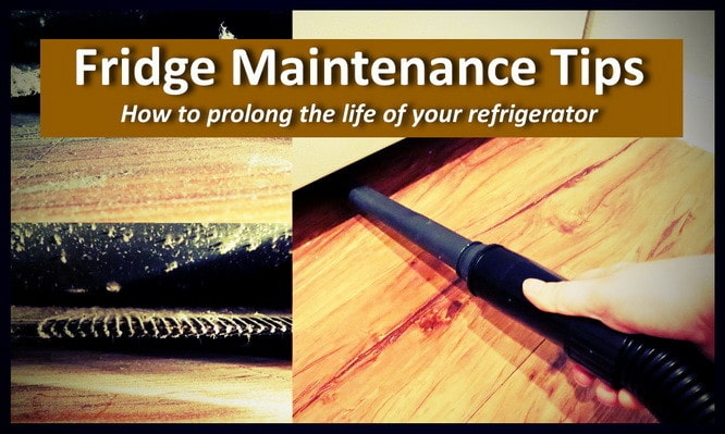 fridge maintenance tips