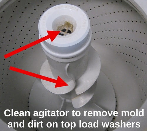 clean agitator to remove mold and dirt