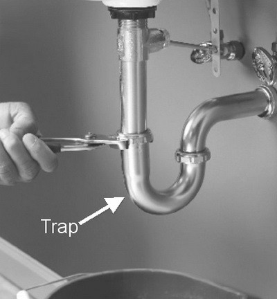 drain trap