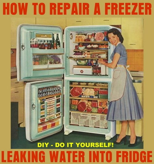 repair freezer leak water into fridge