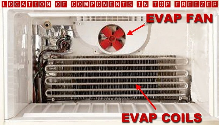 location of evap coils and fan in freezer