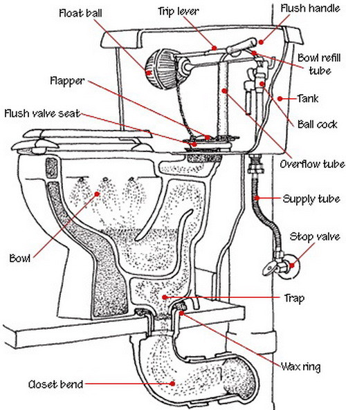 toilet diagram parts