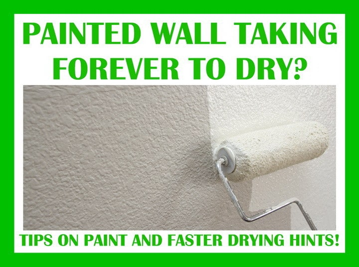 paint taking forever to dry how long does wall paint take