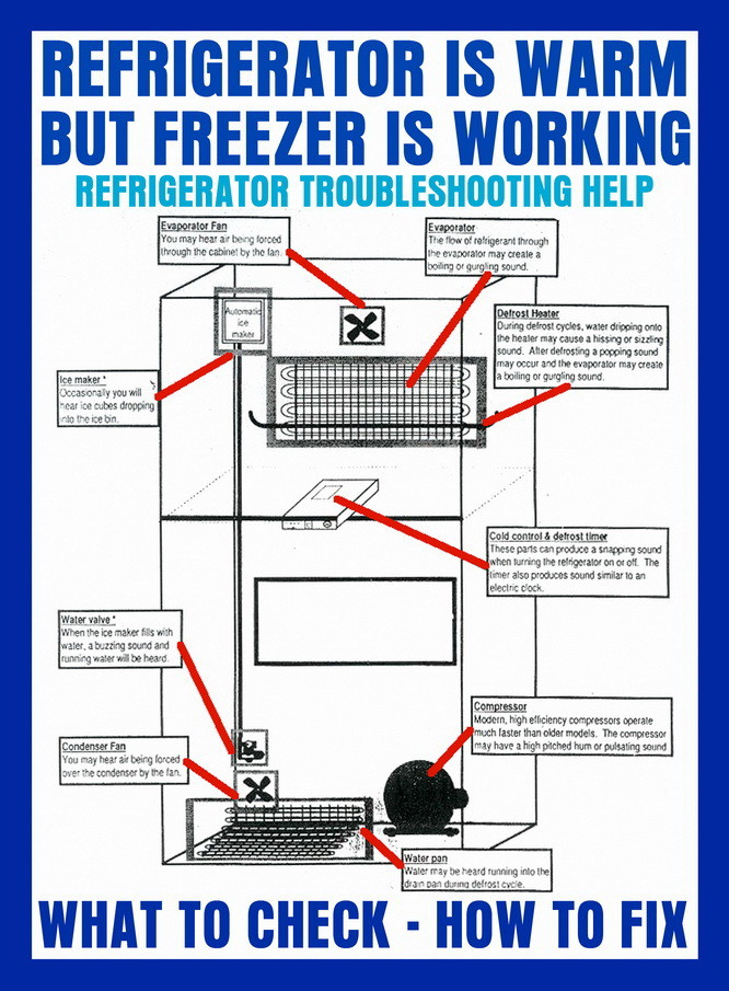 Refrigerator is warm but Freezer is working