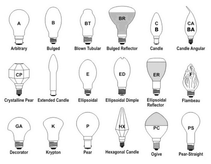 Light Bulb Shape Chart